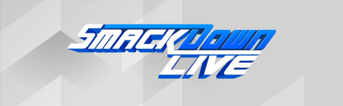 WWE SmackDown LIVE: 28.05.2019